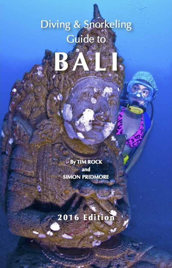 Bali Dive Guide Cover Image
